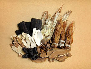Integrative Translations root herbs